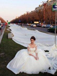 Longest Wedding Dress Train