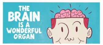 The Brain is a Wonderful Organ