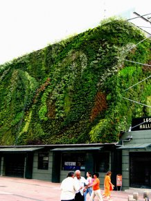 Vertical gardens around the World