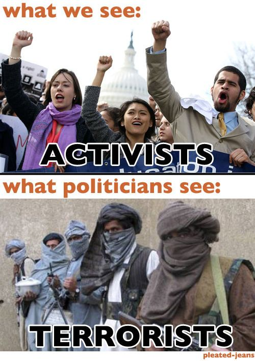 What We See vs. What Politicians See
