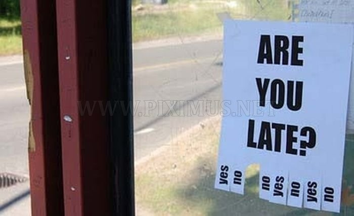 The Funniest Street Fliers