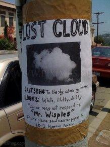 The Funniest Street Fliers
