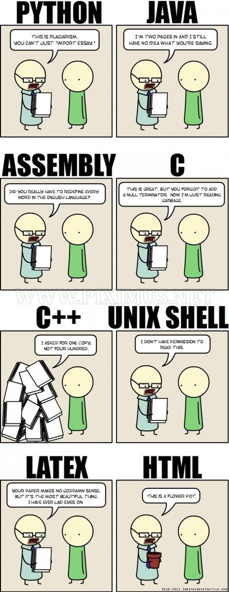 Programming Languages in School
