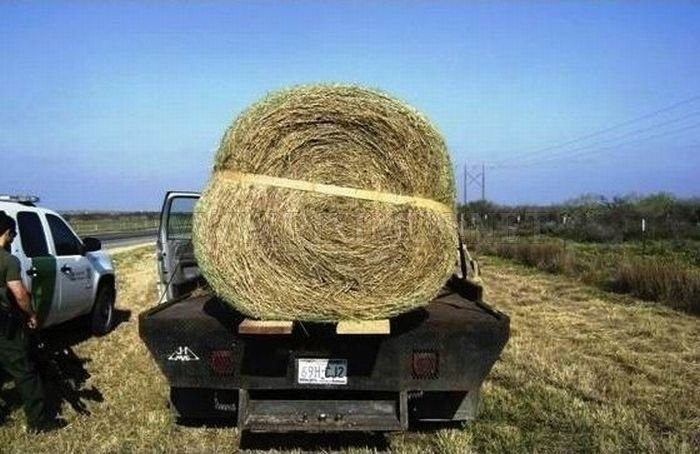 What's Inside This Haystack?