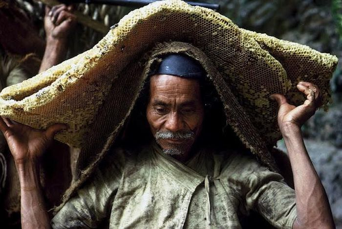 Wild Honey Collectors of Nepal