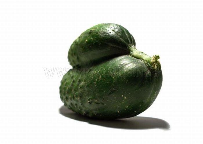 Mutant Vegetables