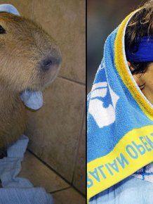 We Just Found a Lookalike of Rafael Nadal