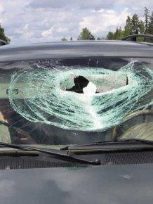 Lucky Couple Survived a Pickaxe Attack