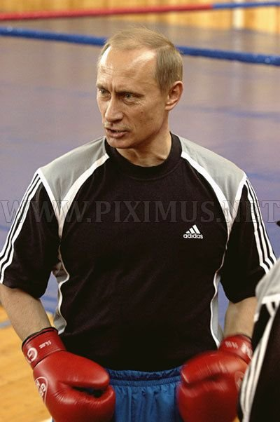 Vladimir Putin Doing Sport Celebrities