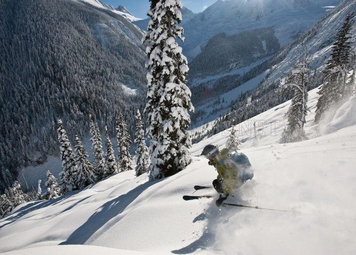 Amazing Winter Photography