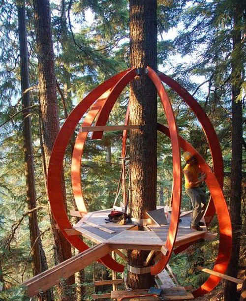 Squatter Tree House in Canada