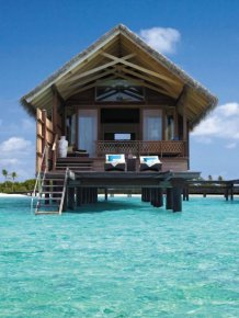 You Want to go to the Maldives Villingili Resort and Spa