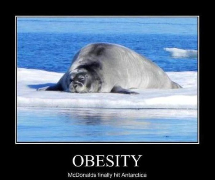 Funny Demotivational Posters, part 71