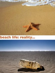 Beach Expectations vs Reality