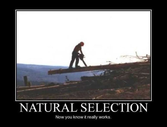 Funny Demotivational Posters, part 73