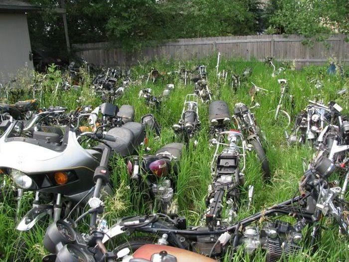 Motorcycle Graveyard Vehicles