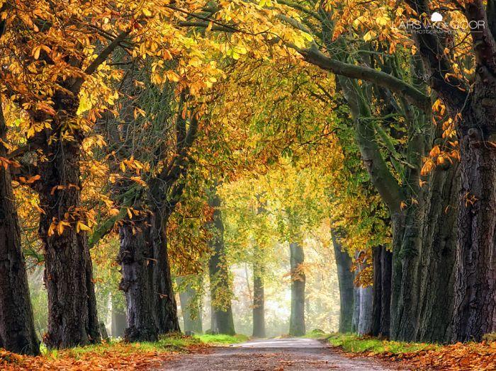 Beautiful Nature, part 3