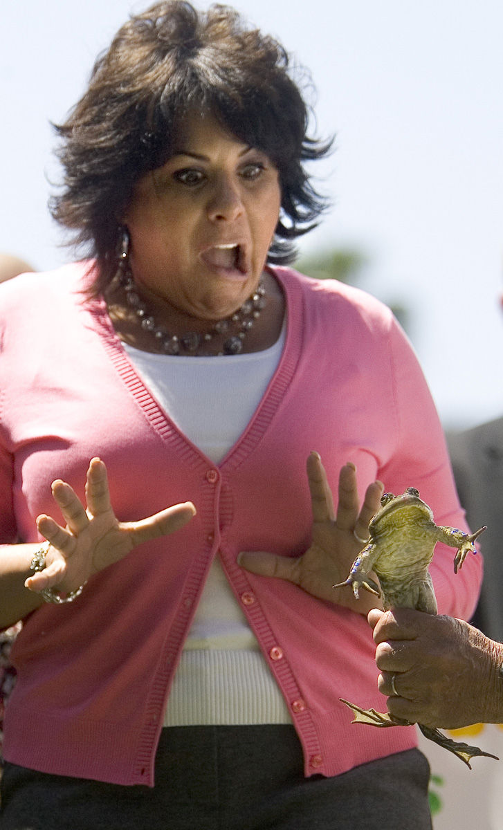Funny Jumping Frog Jubilee in California
