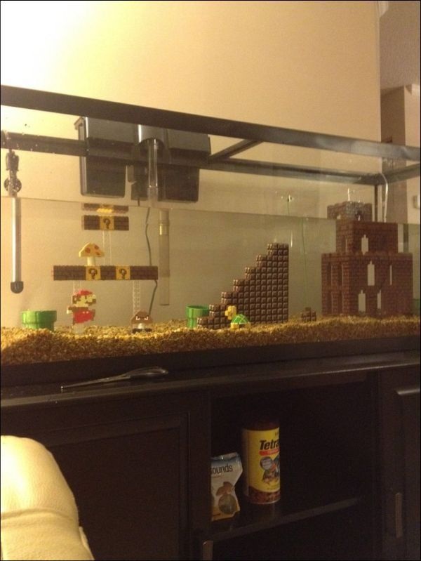 Super Mario themed aquarium