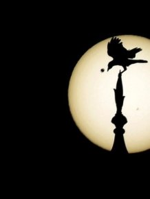 Venus Passing In Front Of The Sun