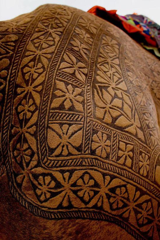 Amazing Camel Hair Art