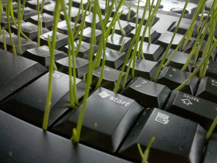Great Use of an Old Keyboard