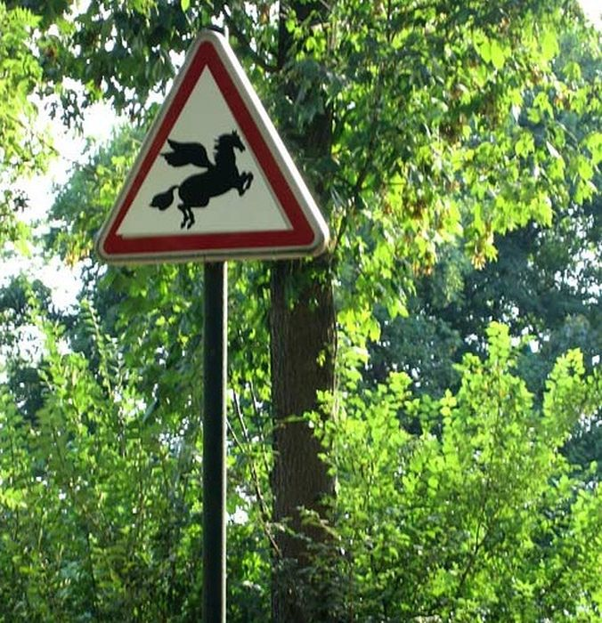 Hilarious Road Signs