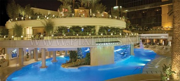 World Most Luxurious Pools Others