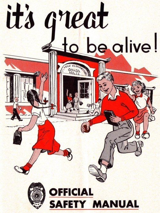 Official Safety Manual For American Children S  Others