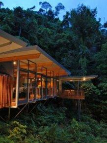 Amazing Tree House in Australia
