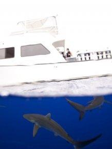 National Geographic Traveler Photo Contest 2012