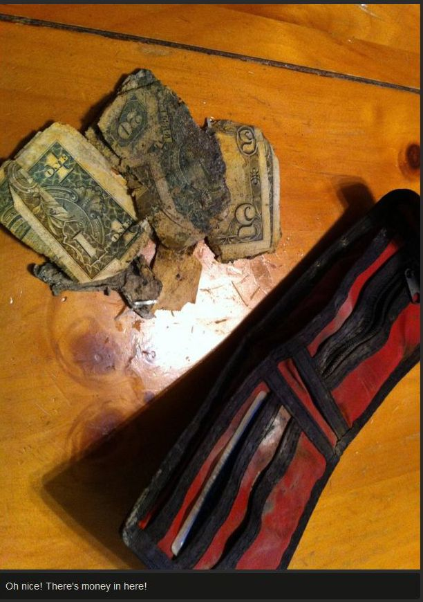 Reunion of a Man and His Wallet after 12 Years