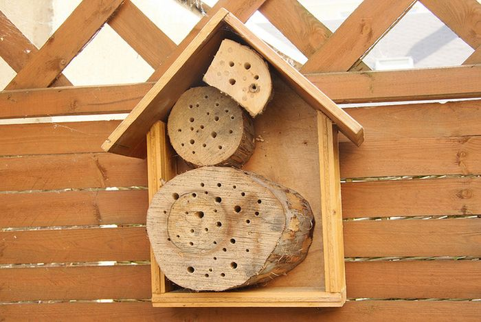 Bee Hotel in Paris