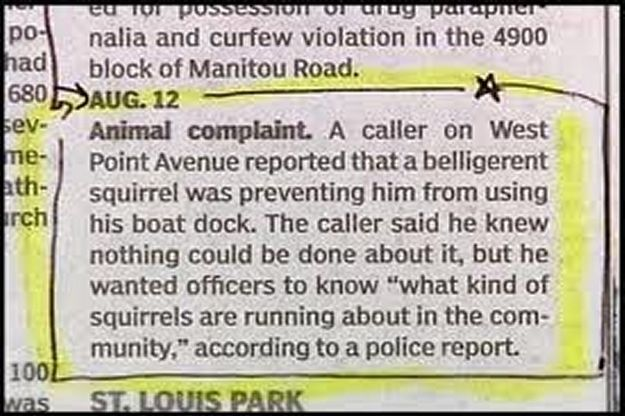 Animal-Related Police Blotters