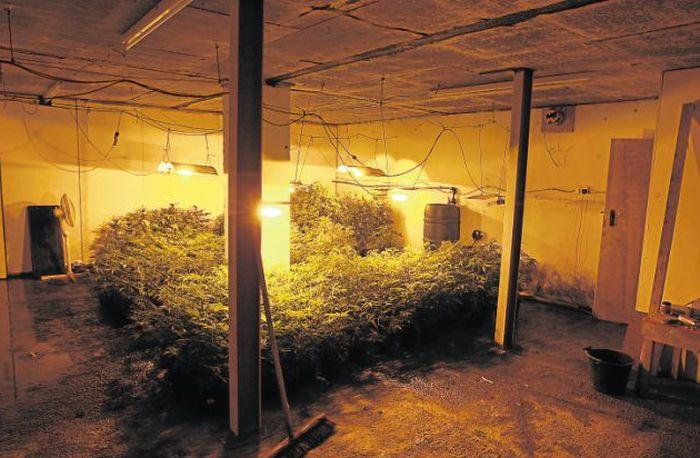 Police Found an Underground Bunker