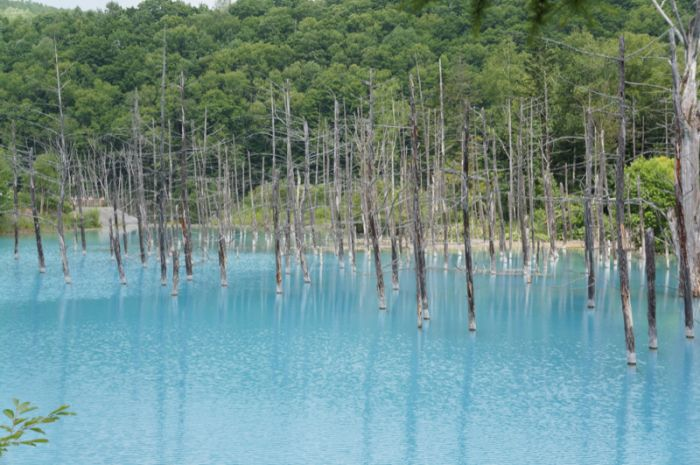 Blue pond hokkaido japan others for Your pond japan