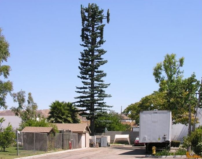 That's How Cell Phone Towers Are Disguised