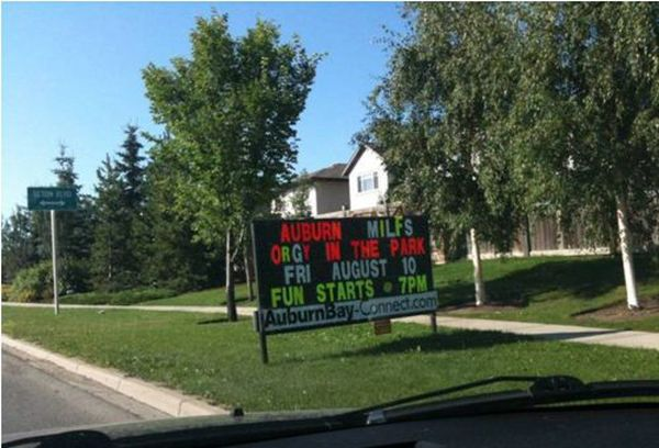 Street Signs WTF
