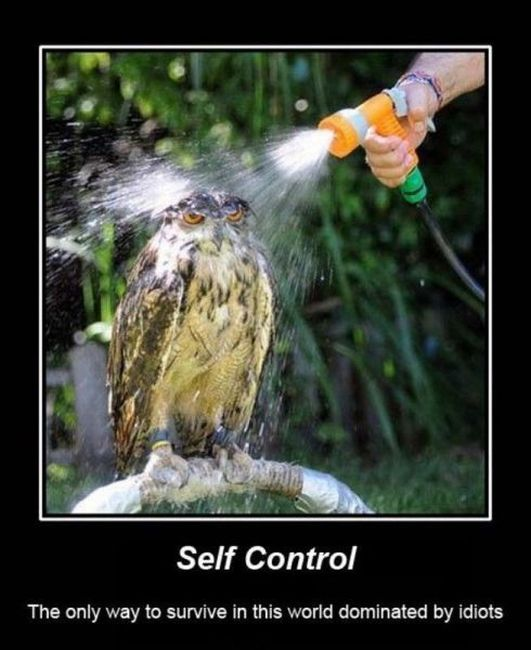 Funny Demotivational Posters, part 105