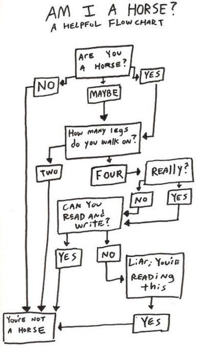 Funny Flowcharts