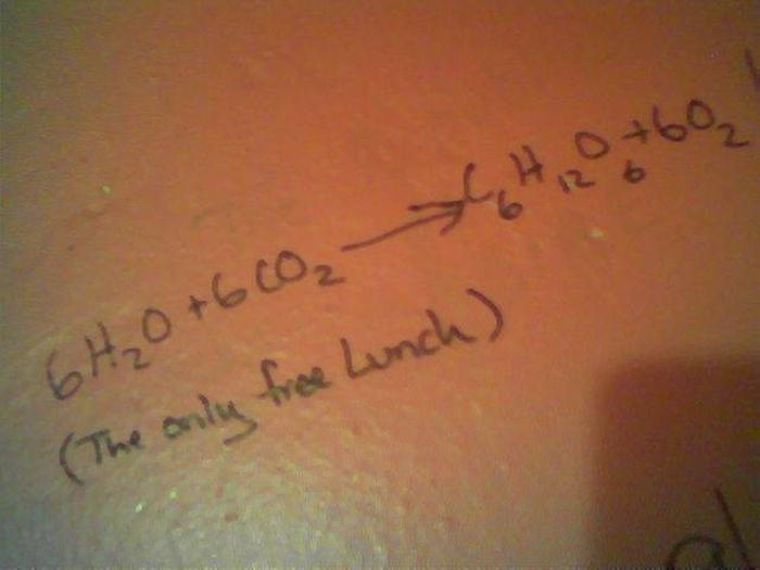 Bathroom Graffiti Wisdom
