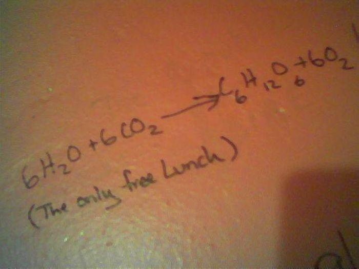 Bathroom Graffiti Wisdom