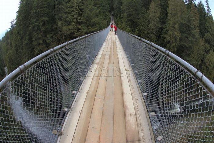 Fascinating Capilano Suspension Bridge