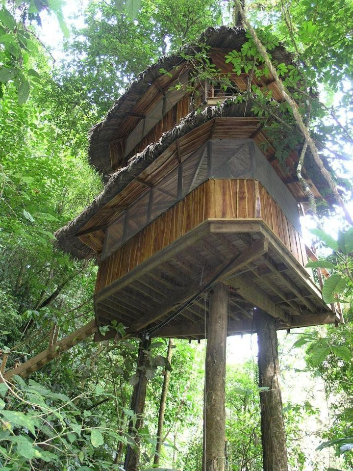 Fantastic Treehouse Village in Costa Rica