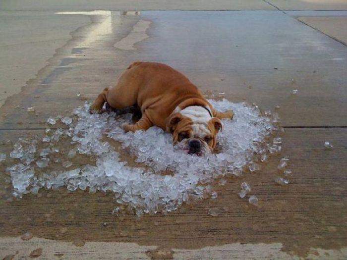 When heates comes