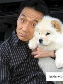 Funny Pictures of Jackie Chan
