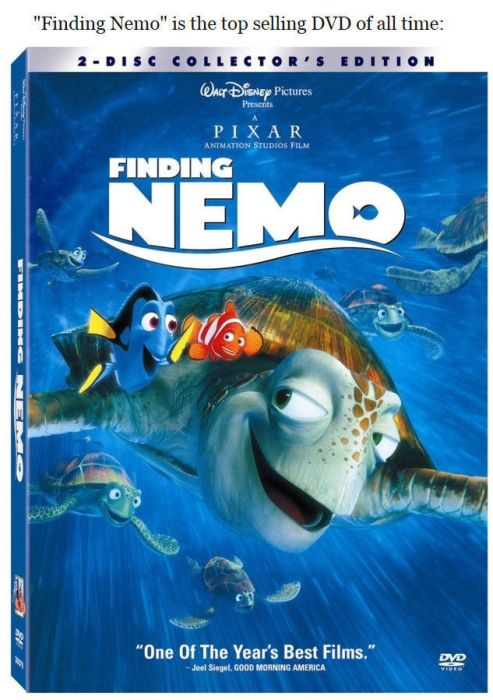 "Facts You Probably Didn't Know About ""Finding Nemo"""