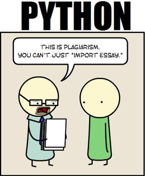 Humorous mix up essay