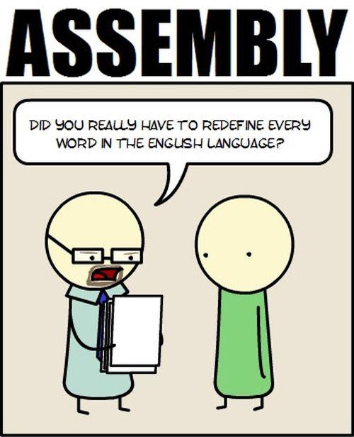 Essays Written in Programming Languages