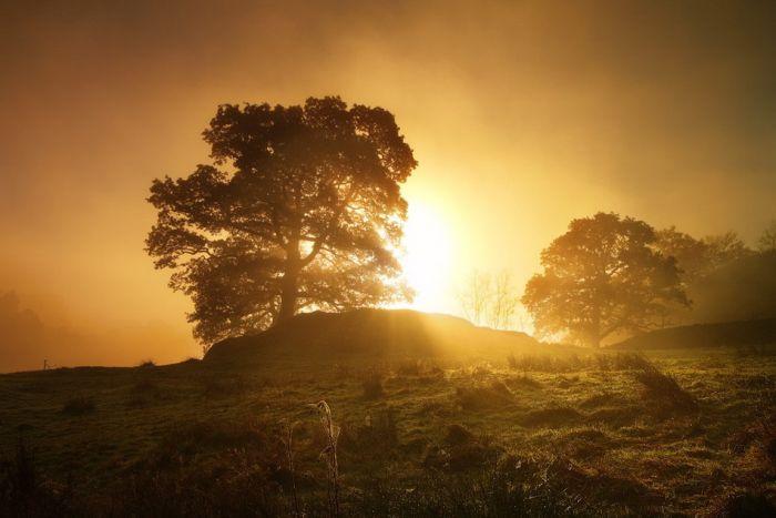 Beautiful Cheshire